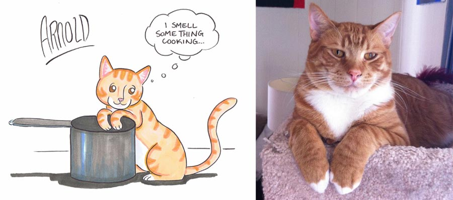 cartoon-cat-portrait-orange-tabby
