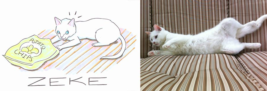 cartoon-cat-portrait-white-potato-chip