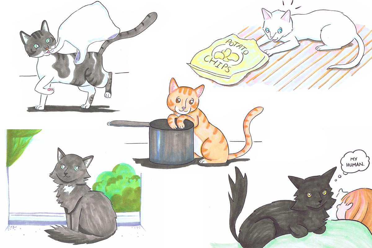 cartoon-cat-Portraits-group